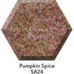Pumpkin Spice SA24