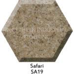 Safari SA19